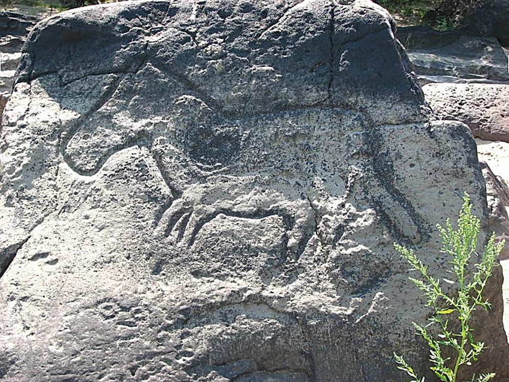 амурские петроглифы